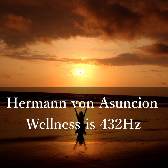 Wellness-Cover