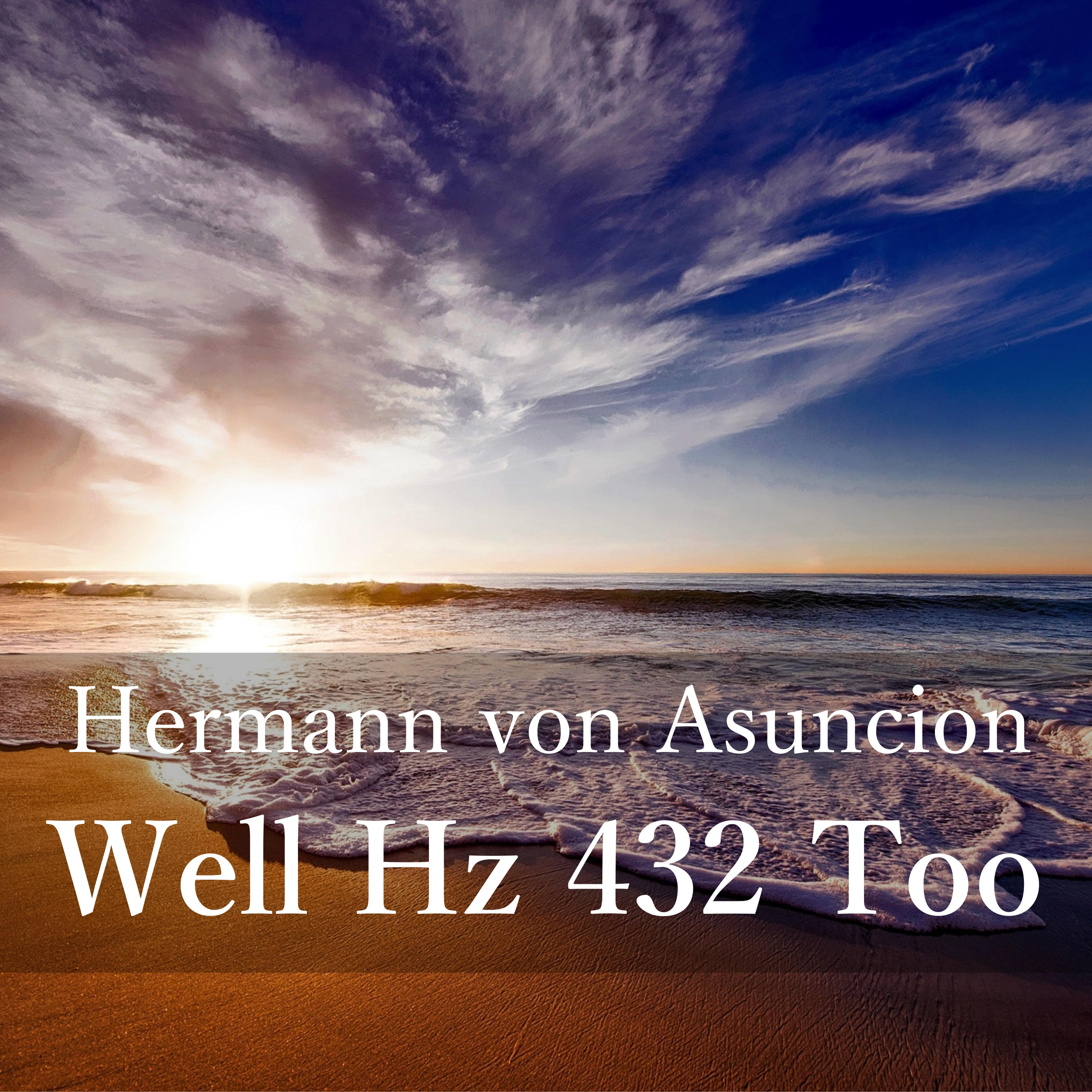 Well Hz 432 Too, cover